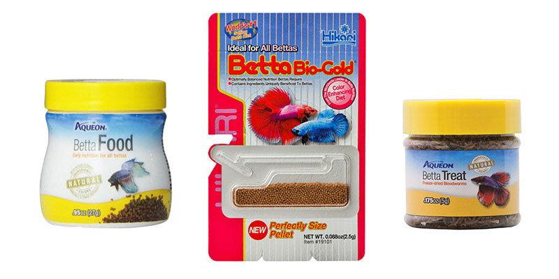 Best Frozen Food For Bettas